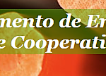 Certificação de Tempo de Serviço prestado no Ensino Particular e Cooperativo e IPSS